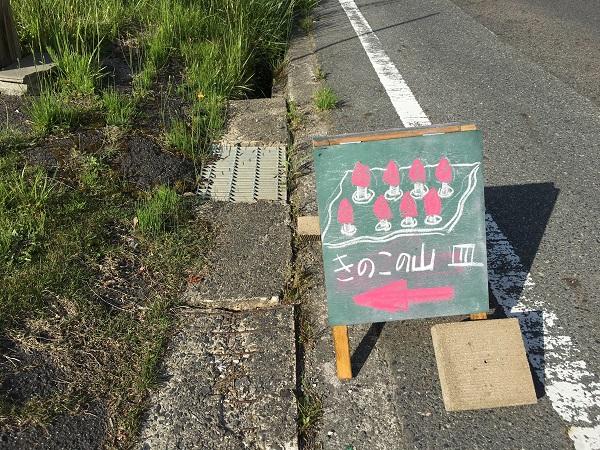 20160504_kinoko_02.jpg
