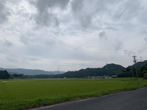 20190827_miyamati_01_IMG_1324.jpg