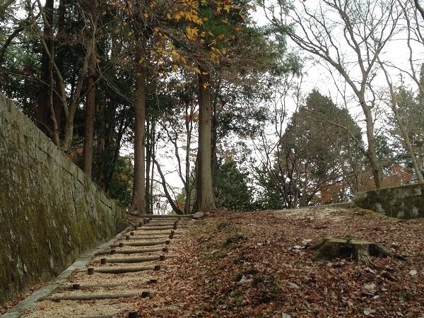 20151225_tarao_03.jpg