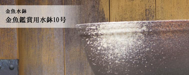 金魚鑑賞用水鉢10号