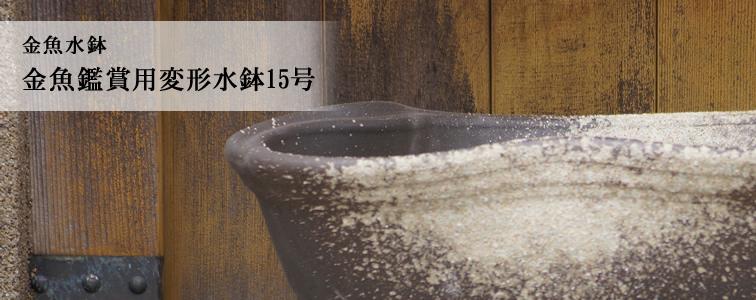 金魚鑑賞用水鉢15号