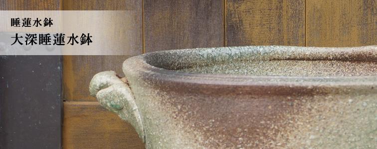 大深睡蓮水鉢